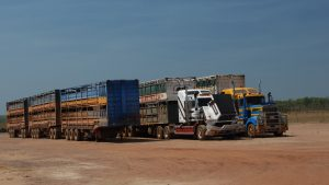 13 axle trailer